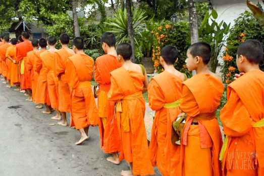 Young monks in alms giving ceremony - Luang Prabang – Laos