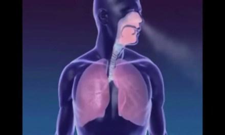 Vídeo Incrível Mostra Como a Respiração Funciona. Ótimo Para Quem Pratica Yoga!