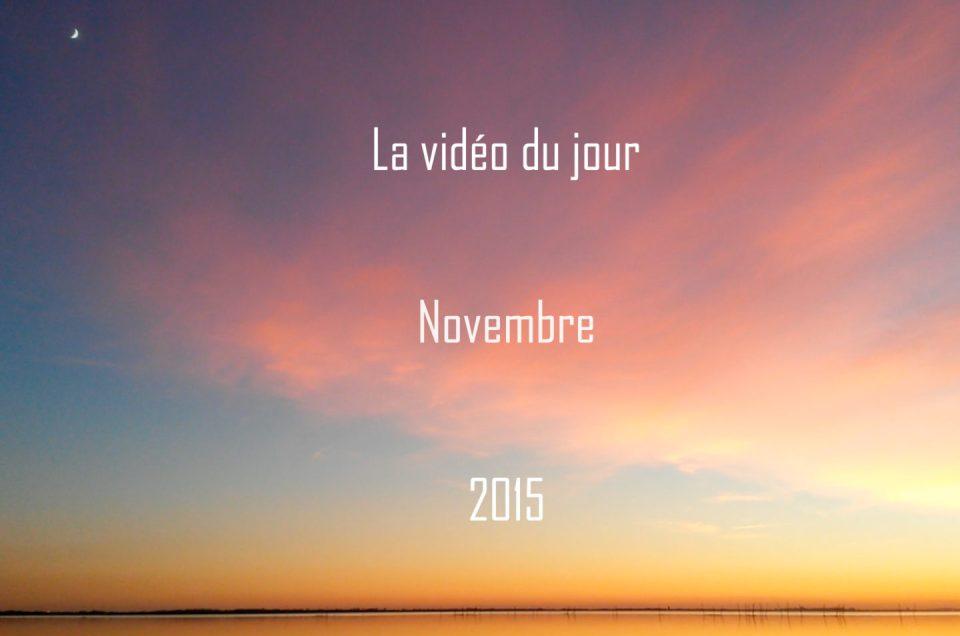 Vidéo du jour – Novembre