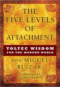 5 levels of attachment cover
