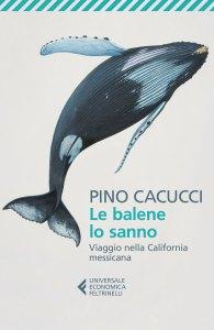 Recensione Le balene lo sanno di Pino Cacucci Recensioni Libri e News UnLibro