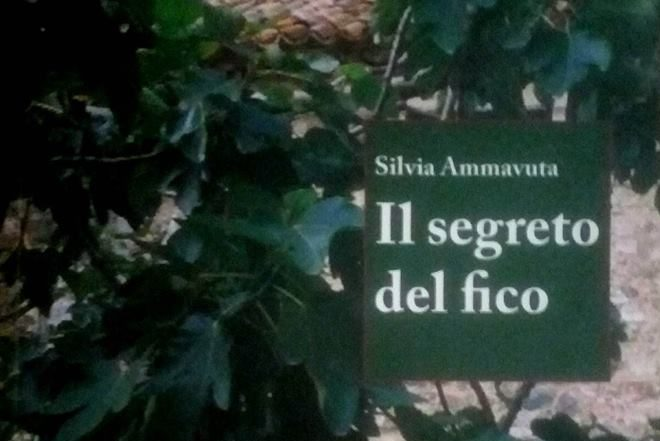 IL SEGRETO DEL FICO Silvia Ammavuta