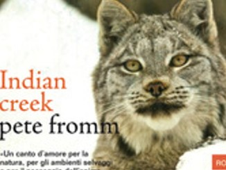 INDIAN CREEK Pete Fromm Recensioni Libri