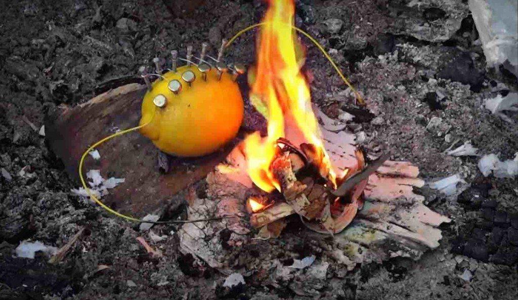 lemon-battery-electricity