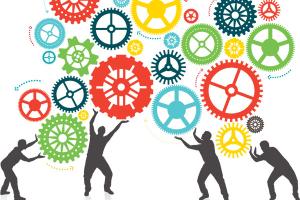 Ideas for Team-Building Activities in Australia