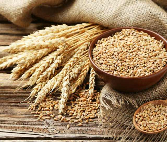 What Are The Symptoms Of A Wheat Allergy
