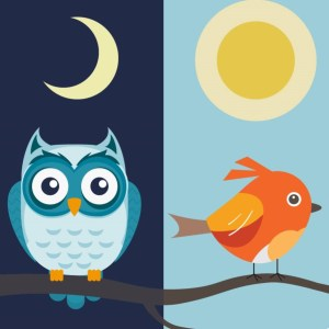 produttività personale mattiniero o nottambulo?