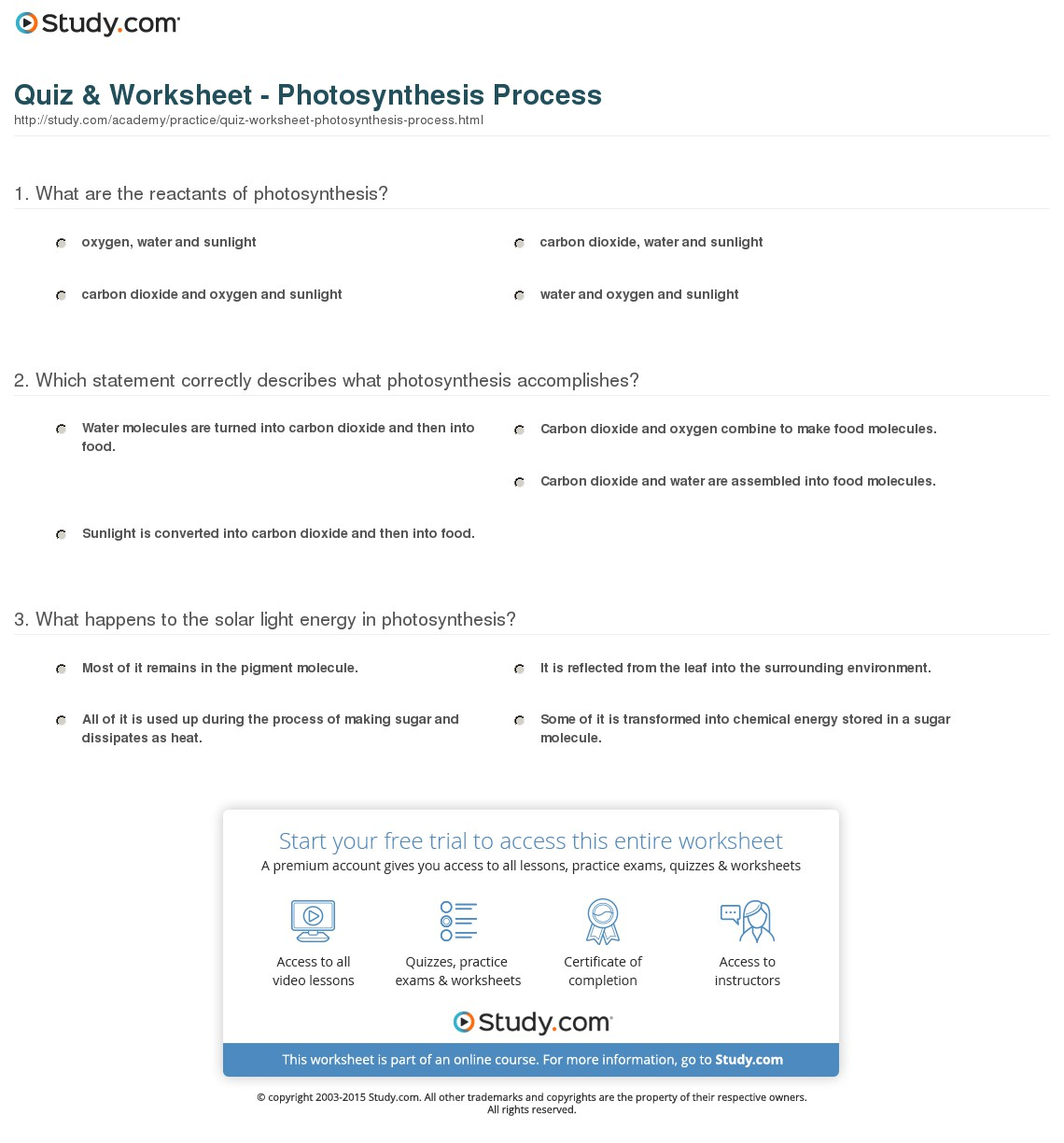 Photosynthesis Worksheets 3rd Grade