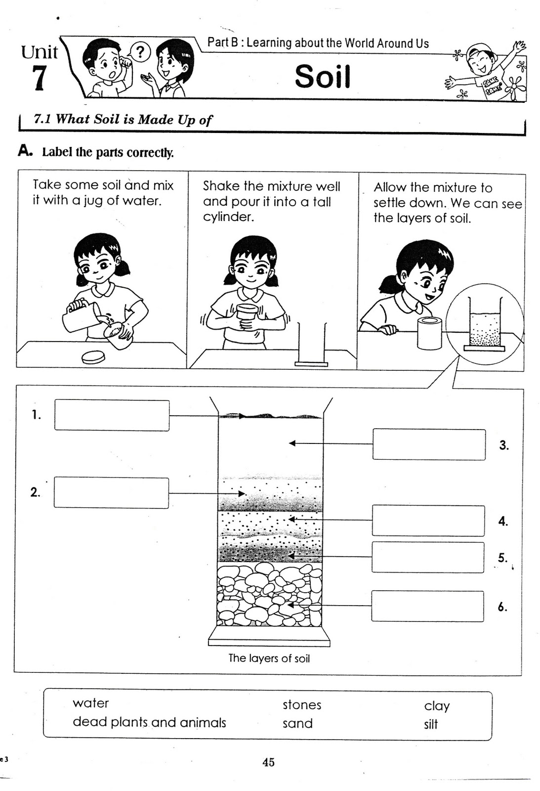 Soil Layers Worksheets