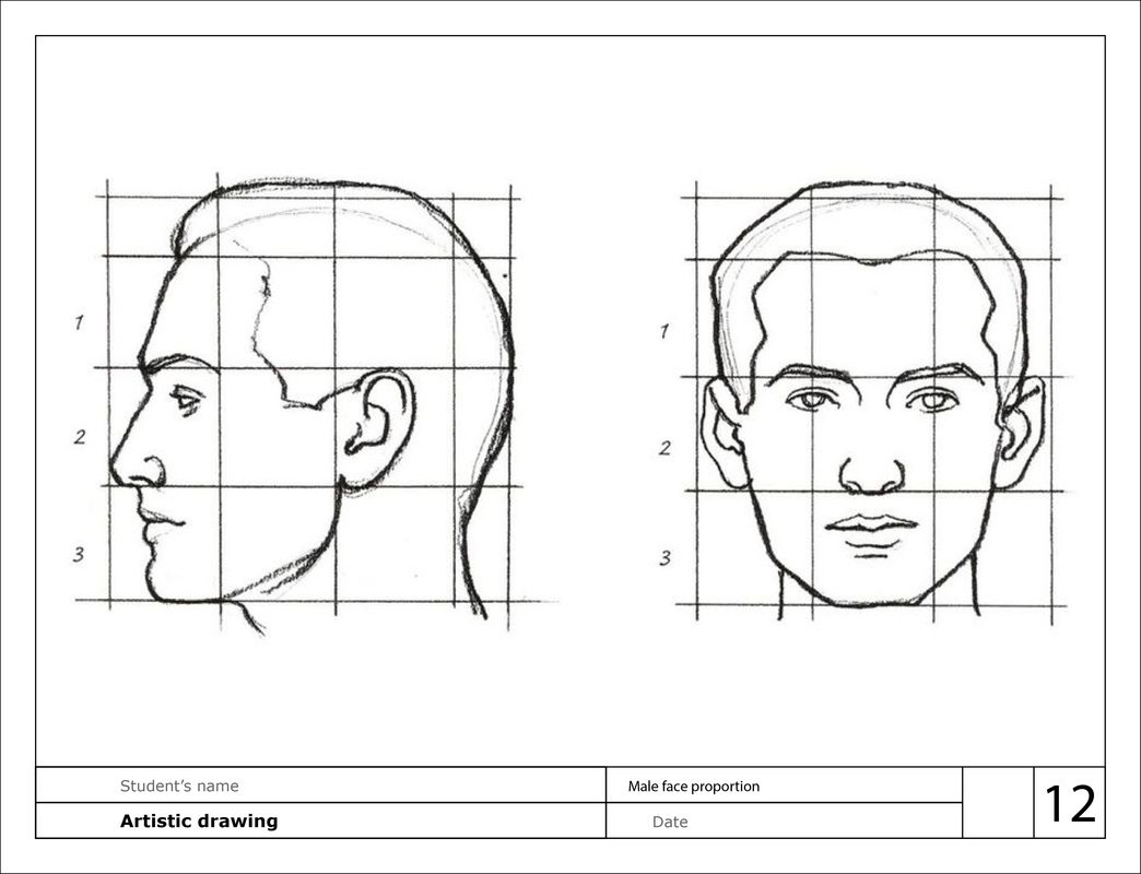 Proportions Of The Face Worksheets