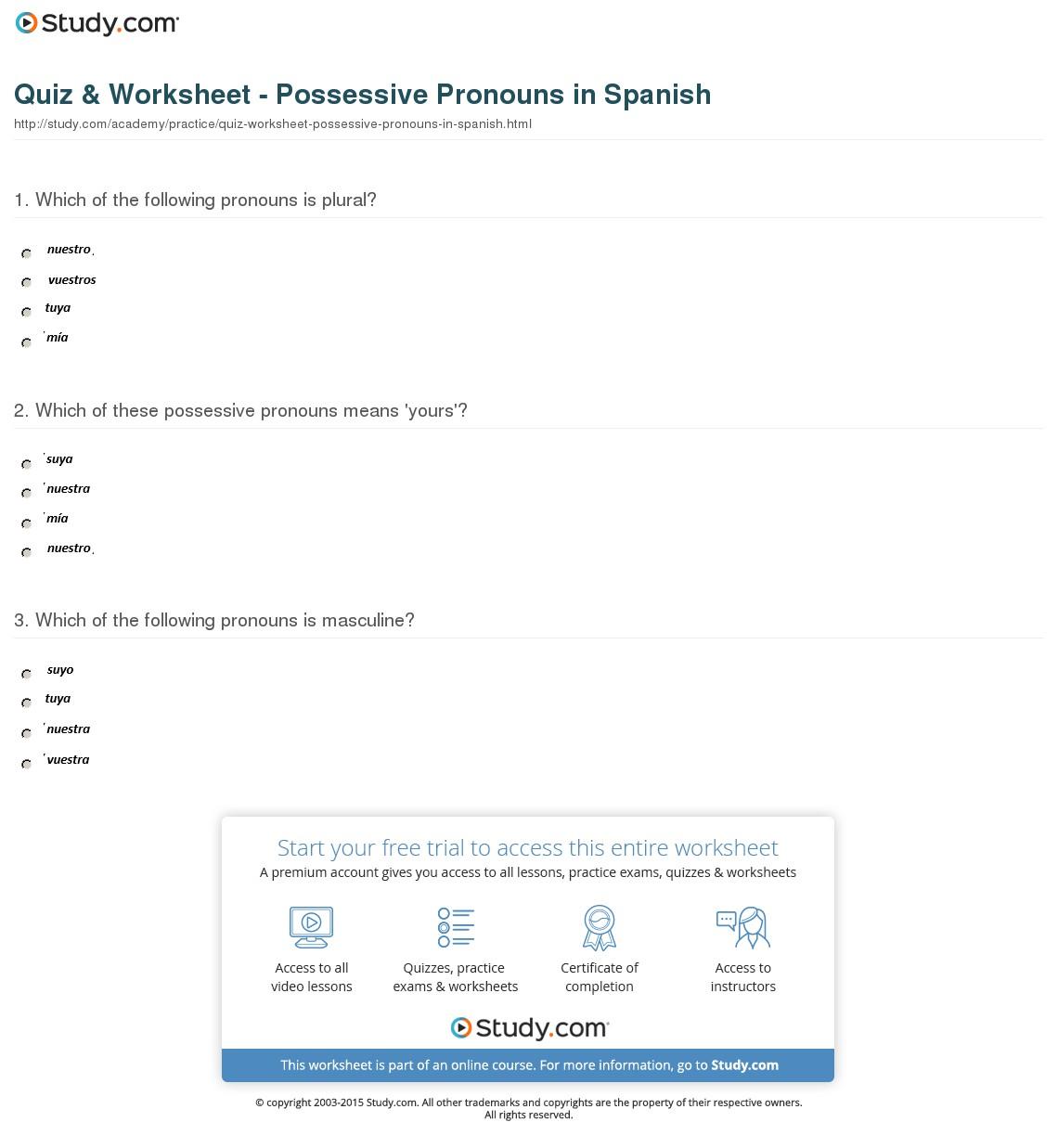 Spanish Possessive Pronouns Worksheets