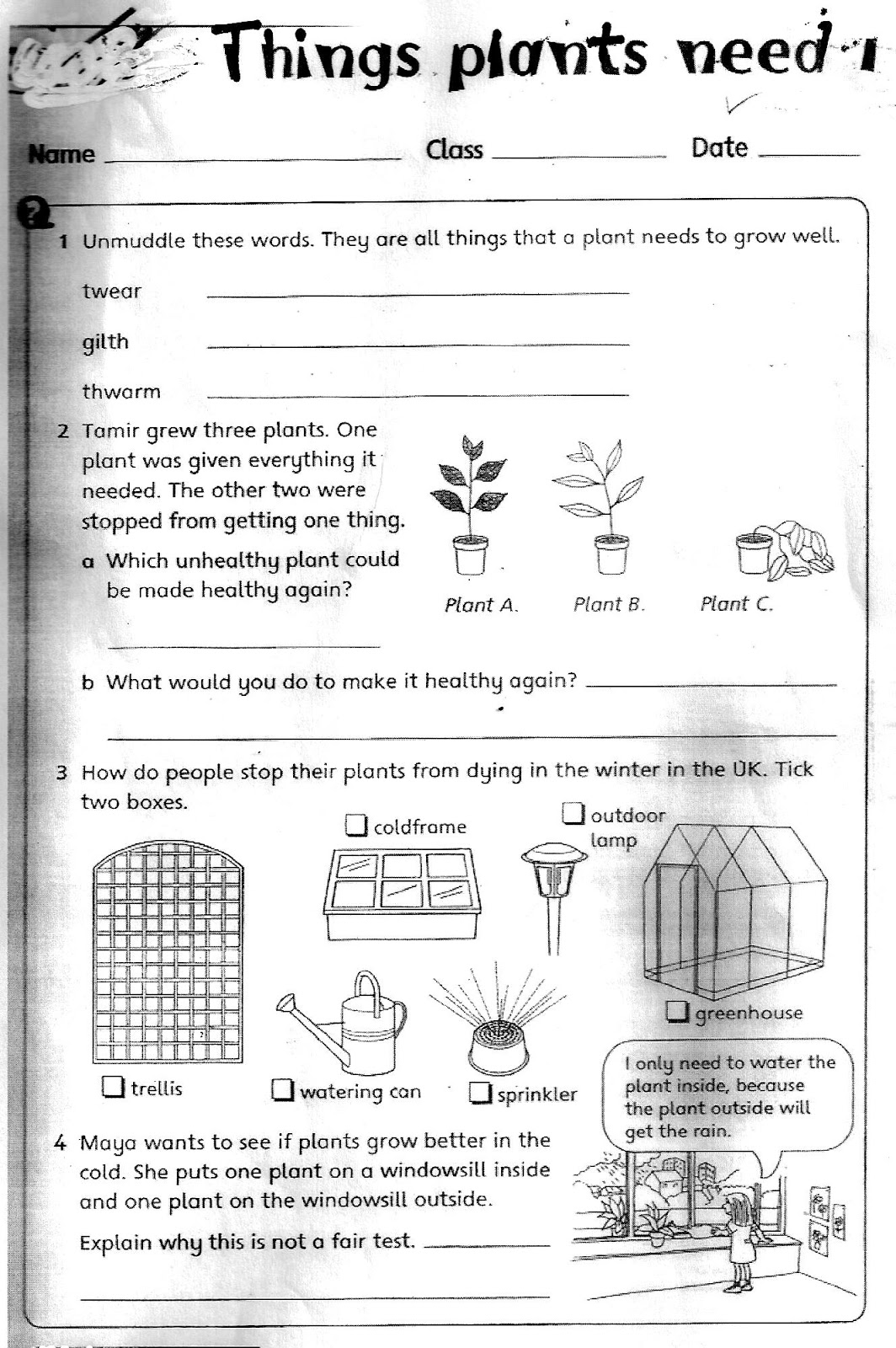 Grade 3 Science Worksheets