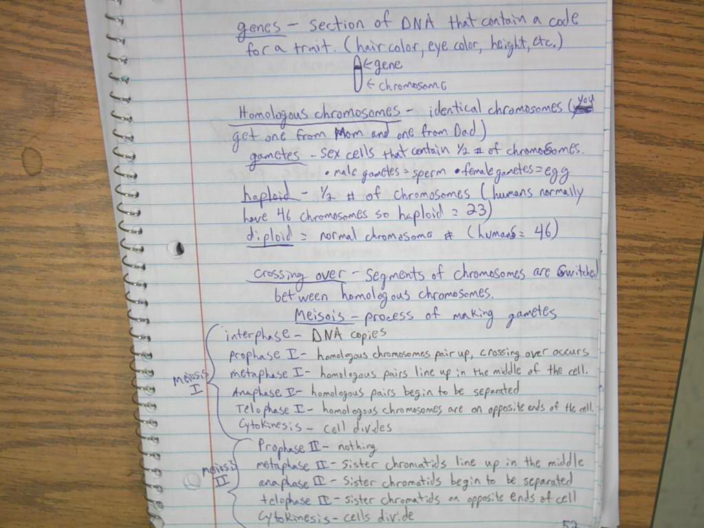 Secret Of Photo 51 Worksheets Answers
