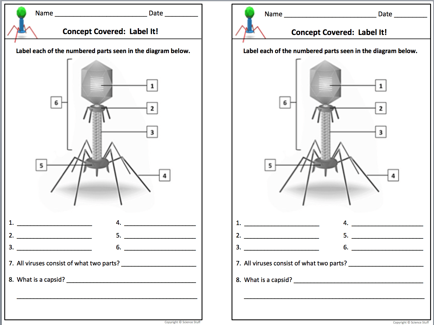 Virus Worksheets For Biology Worksheets Samples
