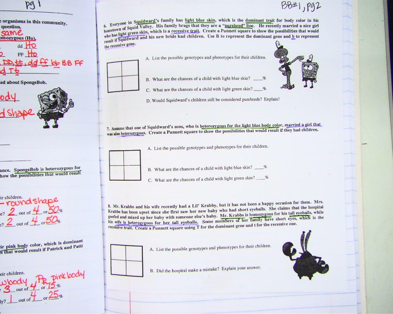 Spongebob Punnett Square Worksheets Answers