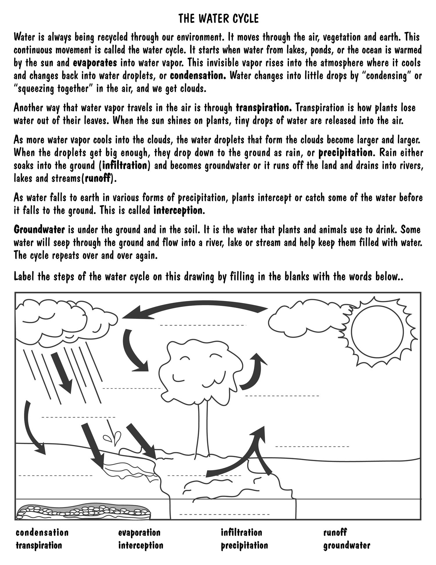 Fill In The Blank Water Cycle Worksheets