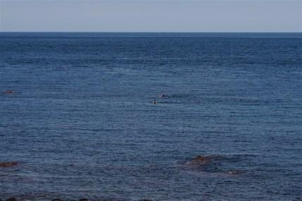 Haenyeo pescando en las aguas de Udo