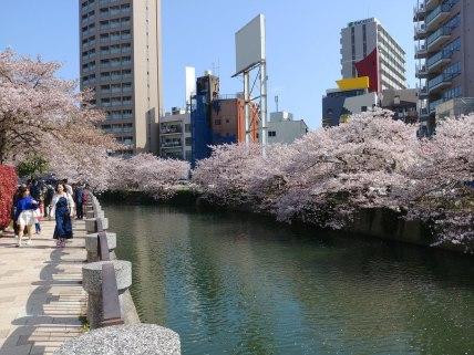 Lateral del parque Chūō-kōen