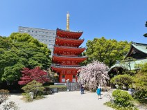 Templo Tōchō-ji, Fukuoka