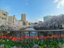 Tenjin, Fukuoka