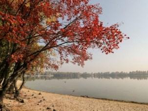 Синоптик розповіла, як довго триватиме потепління в Україні