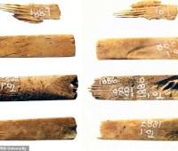 Самый древний набор для татуировок был сделан из костей человека