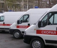 Глава Федерации авиаспорта Дальнего Востока погиб при крушении самолета в РФ