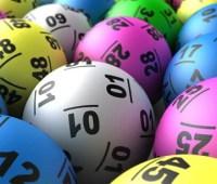 Кот спрятал выигрышный лотерейный билет американки