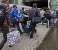 В прошлом году в Украине легально работали более 16 тыс. Трудовых мигрантов