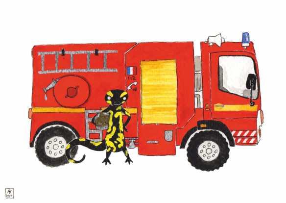 Carte postale éditée par Un Ours dans l'Atelier. Reprographie d'une aquarelle pour enfants représentant une salamandre et un camion pompier.
