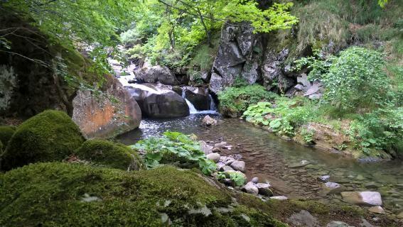 torrente-dolca