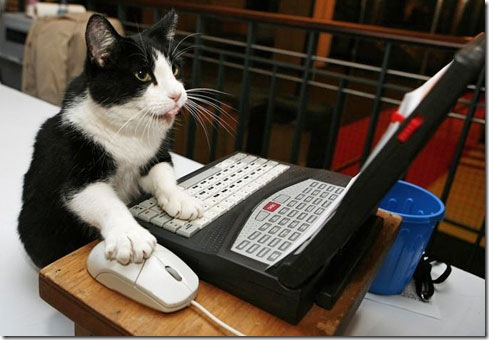 cat-computer-unpocogeek.com