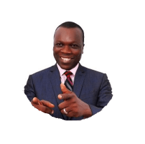 Netpreneur Franchise System Review Dr Ope Banwo