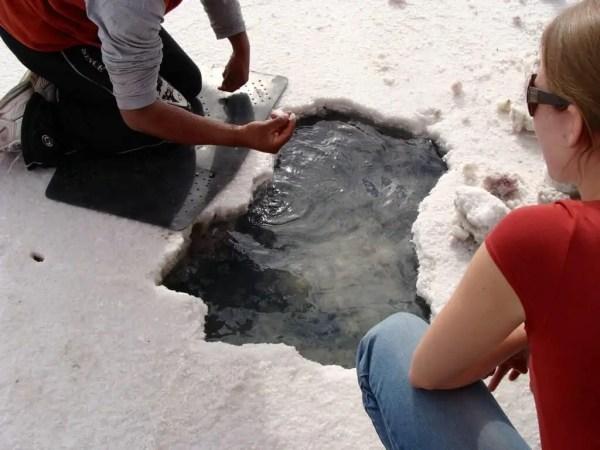 Salar d'Uyuni, Bolivie, critaux de sel
