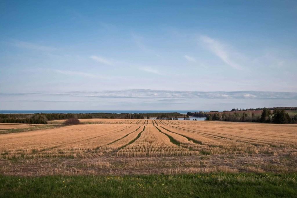 l'ile du Prince Édouard, Prince Edward Island, PEI, Canada