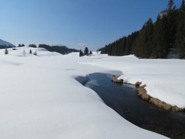 Seewaldsee6