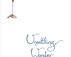 Unsettling Wonder Volume 1