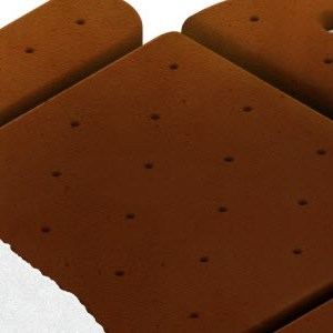 Nom de code : Ice Cream Sandwich