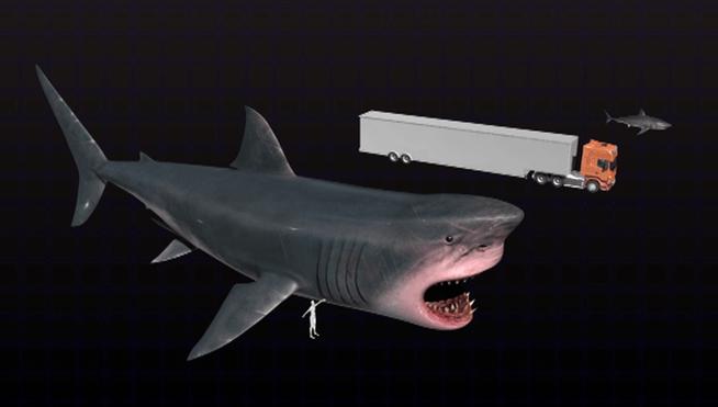 Existe-oceanos-Megalodon-tiburon-metros_MDSVID20160207_0009_17