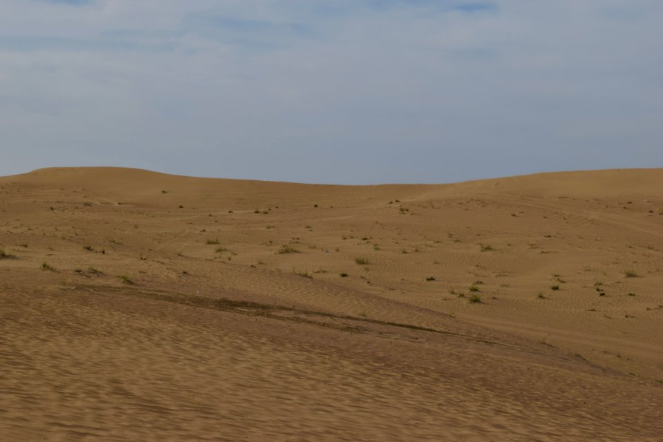 A rolling desert, with very sparse vegetation visible amongst the dunes