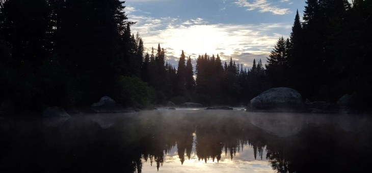 Canoeing the Moose River Loop | Bow Trip: Day 4