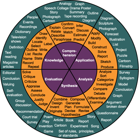 blooms taxonomy photo
