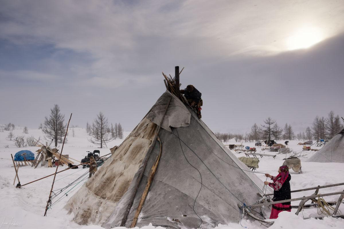 Nenets della Siberia: manutenzione chum prima della tempesta