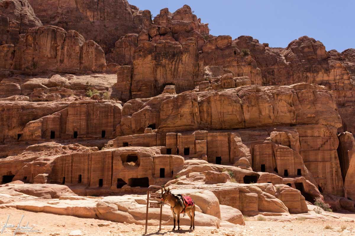 Alcune tombe di Petra