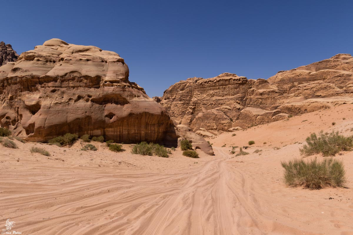 Guidare in Giordania: strade nel Wadi Rum