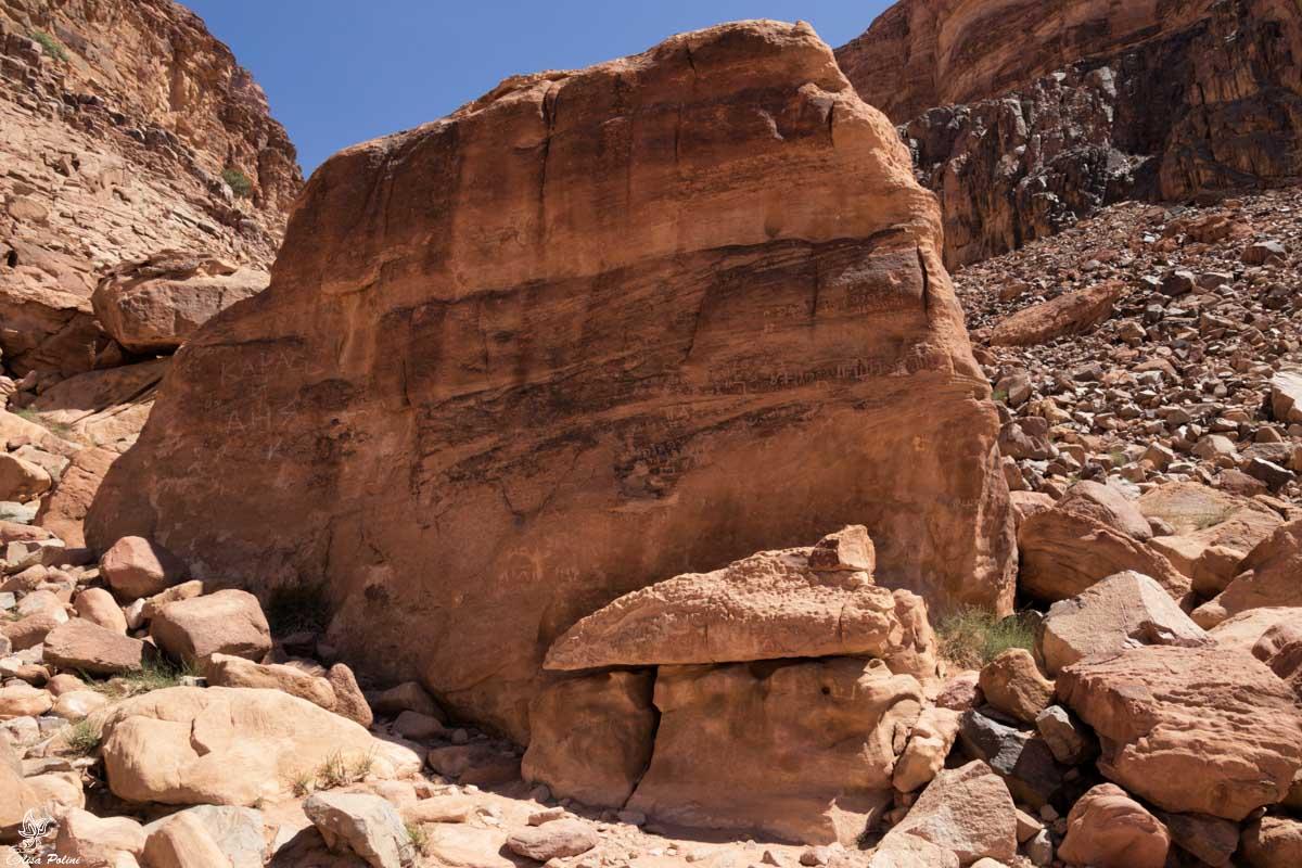 Wadi Rum: incisioni rupestri vicino alla Lawrence Spring
