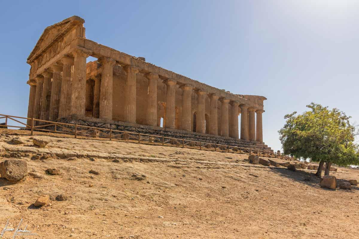 Valle dei Templi: Tempio della Concordia