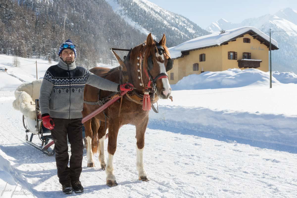 Cosa fare a Livigno: escursione in slitta trainata dai cavalli