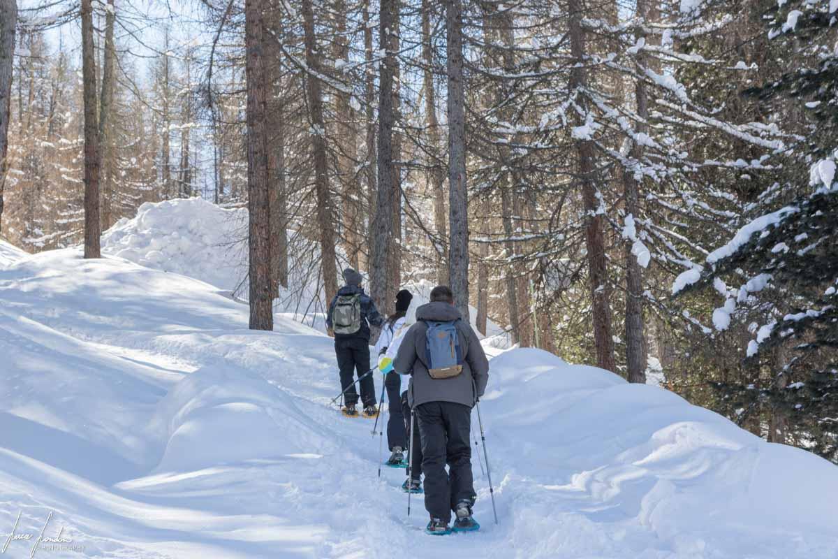 Cosa fare a Livigno: escursione con le ciaspole