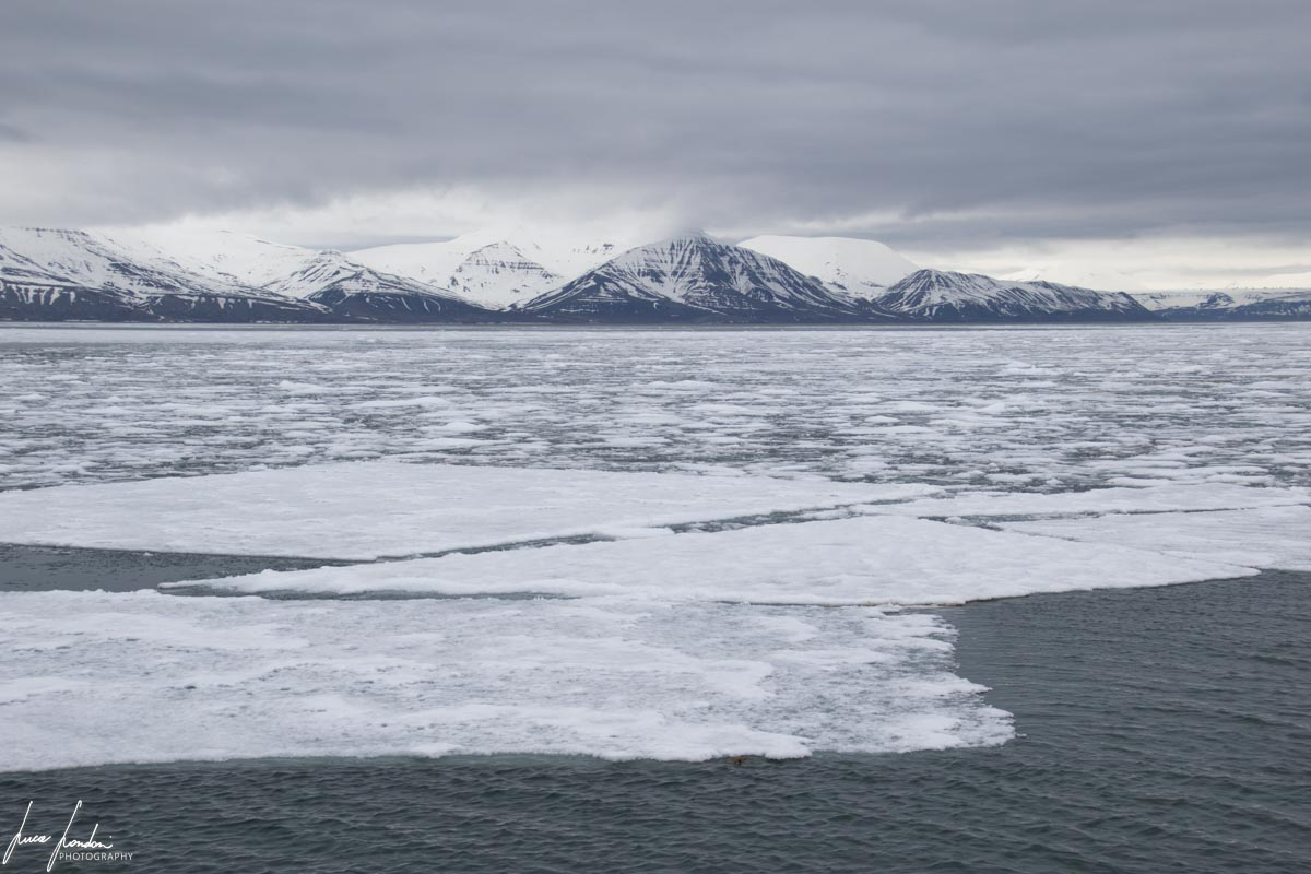 Curiosità sui ghiacciai: Banchisa alle Svalbard (80°N)